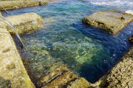 Rock Pools of Sliema. © Tiffany Cromwell